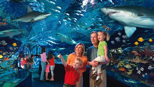 coupon ripleys aquarium of the smokies
