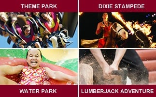 dollywood group discounts