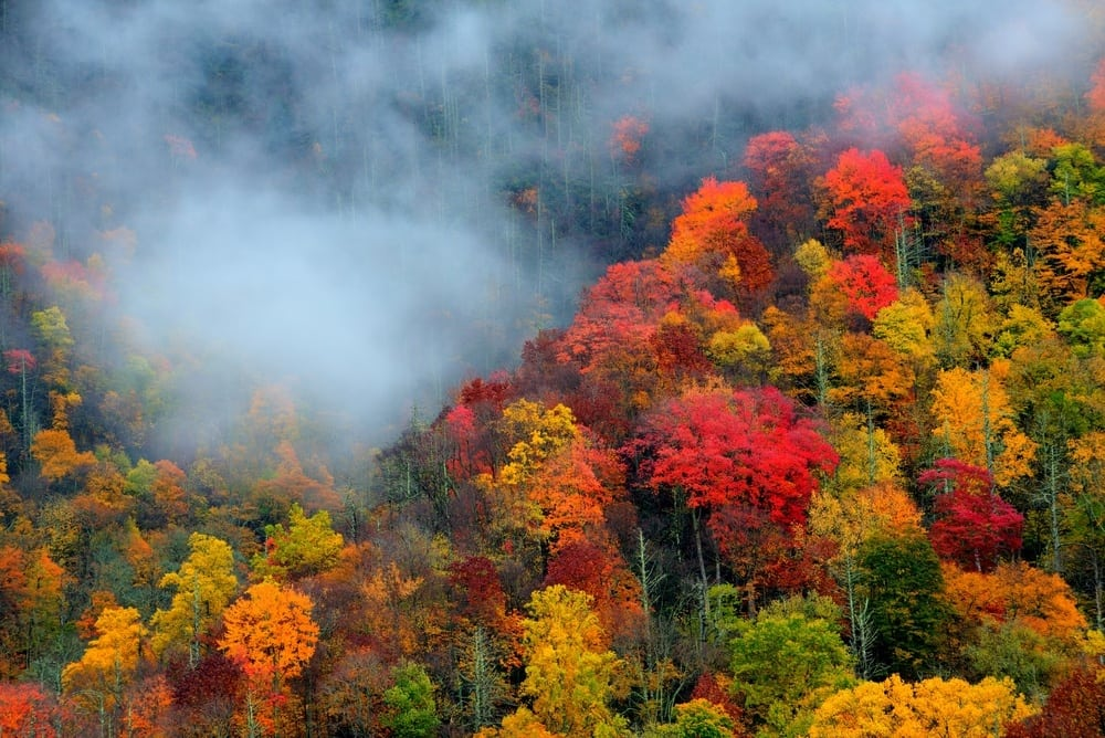 Smoky Mountains Fall Colors Best Time 2020 5 Things to Do in Gatlinburg in October