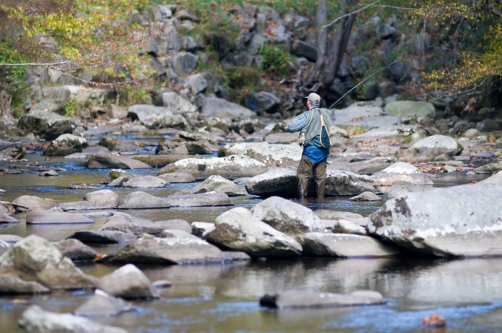 3 best things to do in the smoky mountains for nature for Fishing in gatlinburg tn