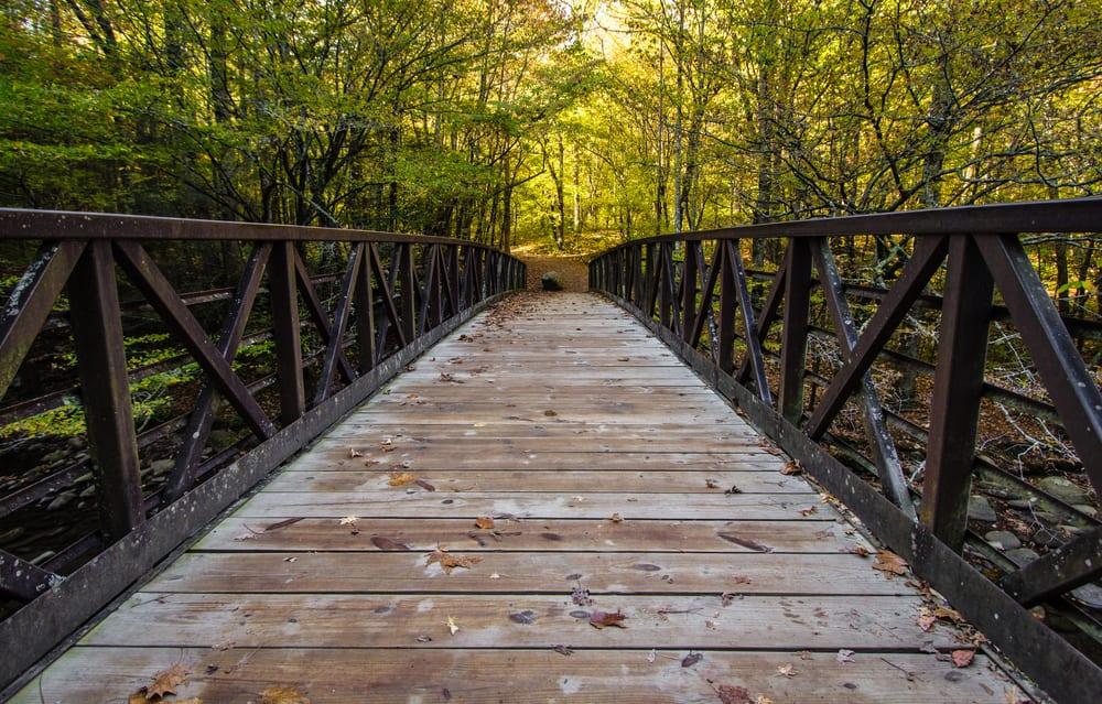 gatlinburg trail footbridge in the smoky mountains